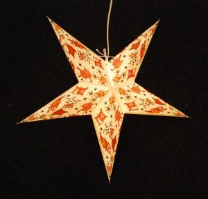 Brokiga stjärna 2-low